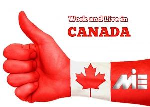 کار در کانادا و وضعیت اقامت کاری