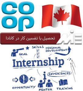 تحصیل با تضمین کار در کانادا