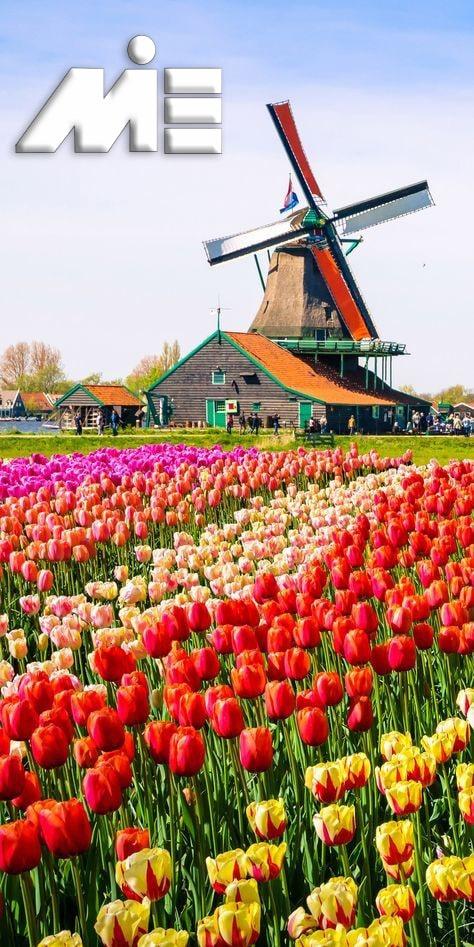جاذبه های گردشگری هلند - ویزای توریستی هلند
