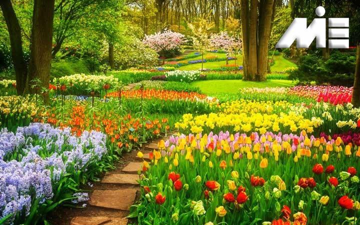 باغ گل کوکنهوف - جاذبه های گردشگری هلند - ویزای توریستی هلند