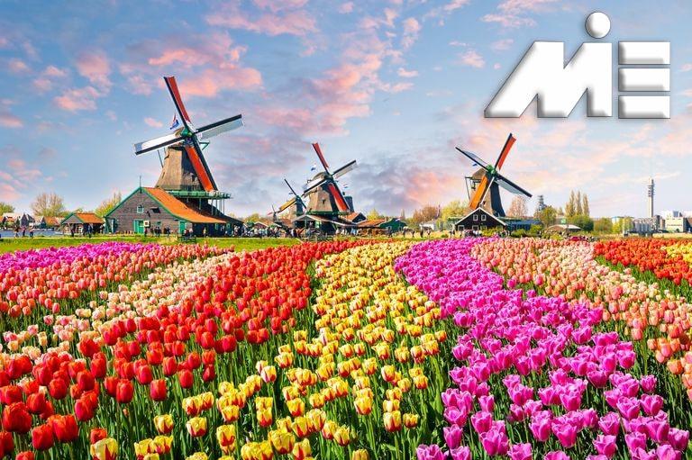 مهاجرت به هلند - اقامت هلند - سفر به هلند - کشور زی
