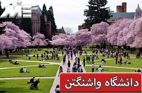 دانشگاه واشنگتن